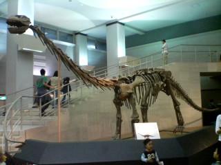 ダトウサウルス