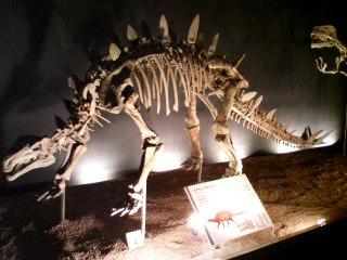 ファヤンゴサウルス